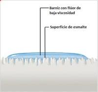 Fluor Protector S tiene unas excelentes características de fluidez y humectación.